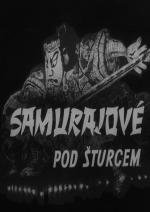 Samurajové pod šturcem